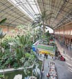 Thumbnail image of tropical greenhouse at Atocha train station, Madrid, Spain